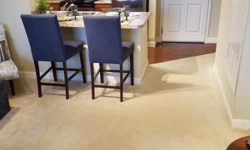 carpeting-livingroom-flooring